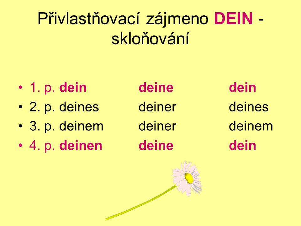 Přivlastňovací zájmeno DEIN - skloňování 1. p. deindeinedein 2. p. deinesdeinerdeines 3. p. deinemdeinerdeinem 4. p. deinendeinedein