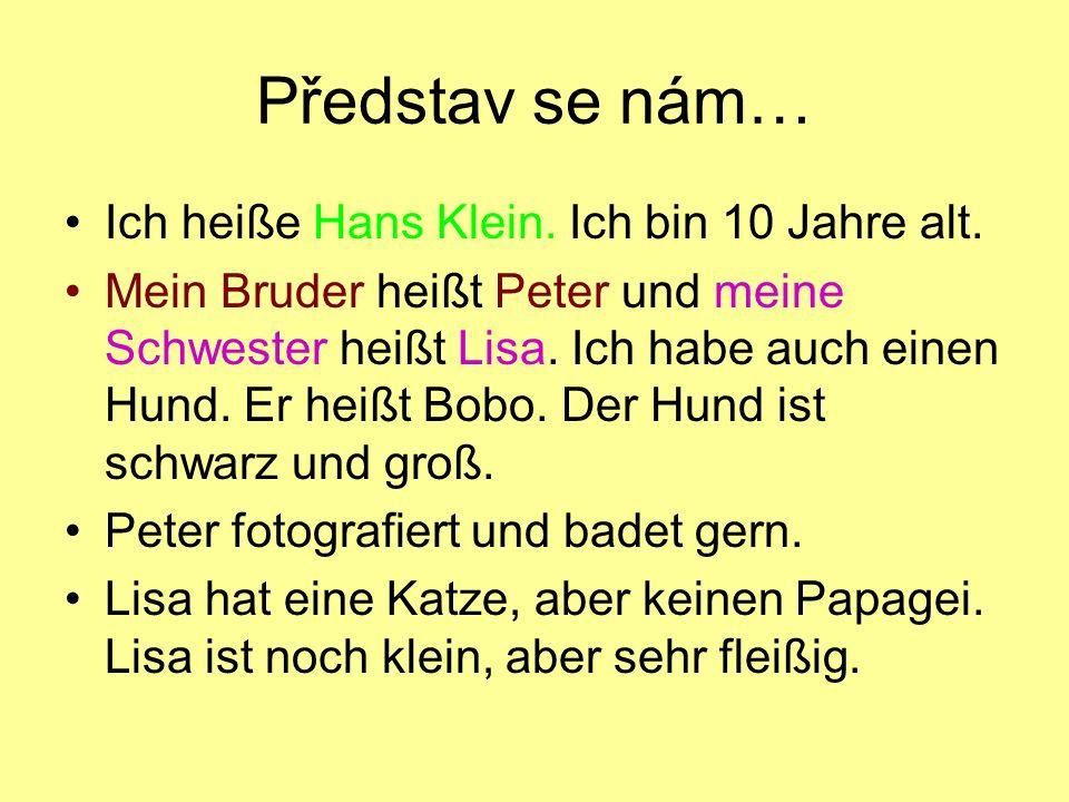 Představ se nám… Ich heiße Hans Klein. Ich bin 10 Jahre alt. Mein Bruder heißt Peter und meine Schwester heißt Lisa. Ich habe auch einen Hund. Er heiß