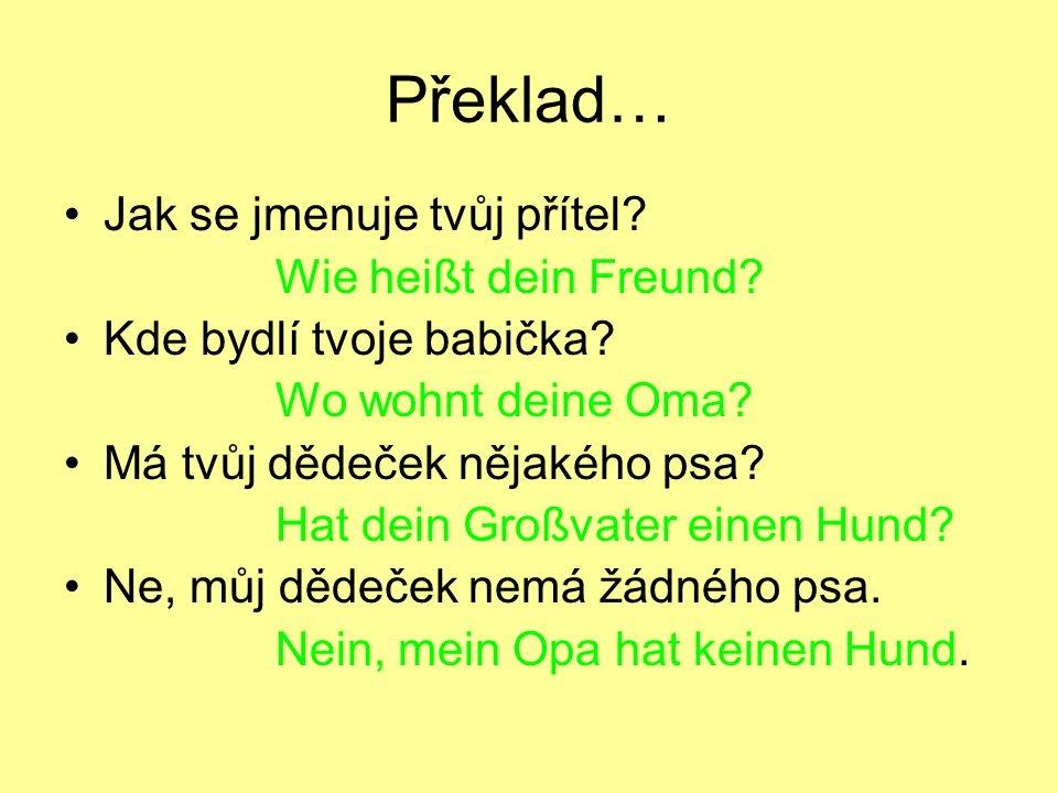 Překlad… Jak se jmenuje tvůj přítel? Wie heißt dein Freund? Kde bydlí tvoje babička? Wo wohnt deine Oma? Má tvůj dědeček nějakého psa? Hat dein Großva
