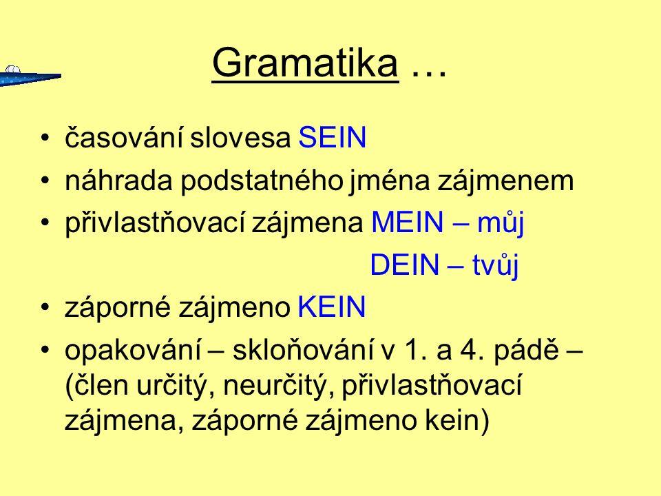 Gramatika … časování slovesa SEIN náhrada podstatného jména zájmenem přivlastňovací zájmena MEIN – můj DEIN – tvůj záporné zájmeno KEIN opakování – sk