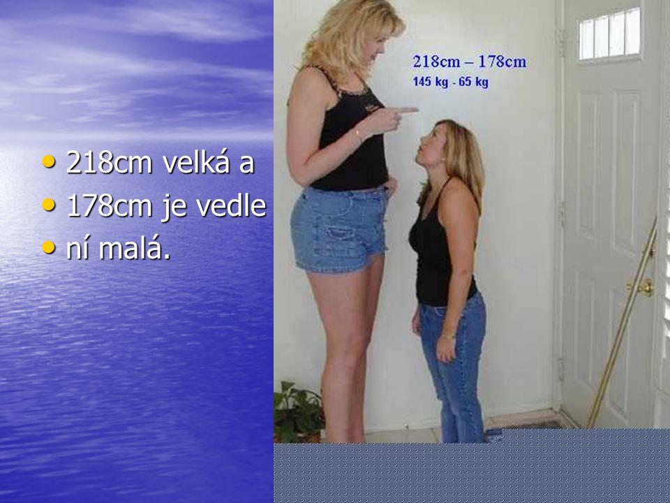 213cm 213cm