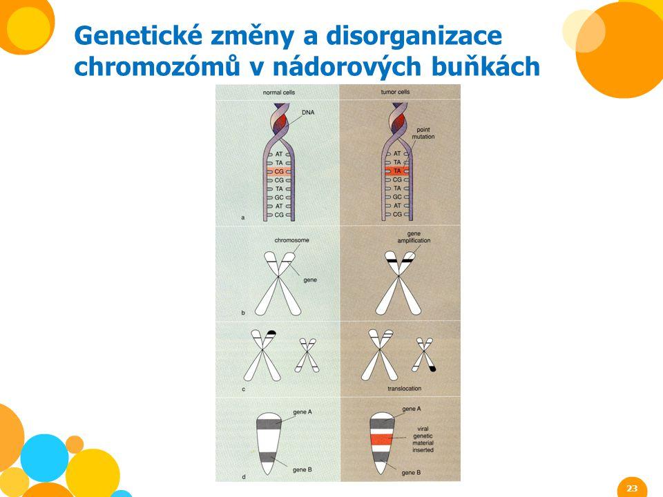 Genetické změny a disorganizace chromozómů v nádorových buňkách 23