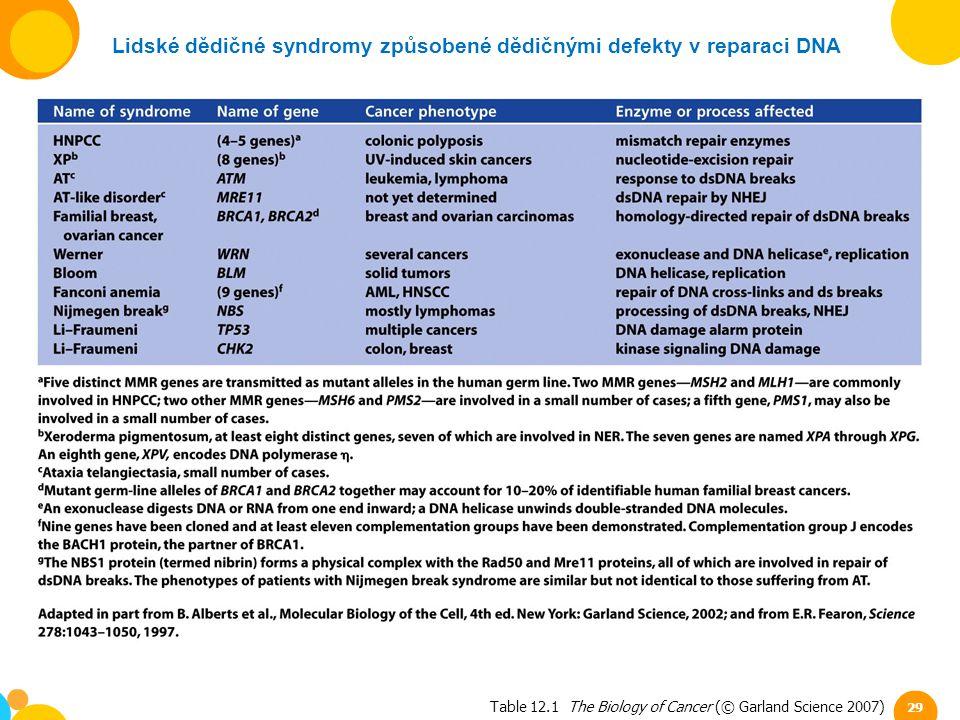 Table 12.1 The Biology of Cancer (© Garland Science 2007) Lidské dědičné syndromy způsobené dědičnými defekty v reparaci DNA 29