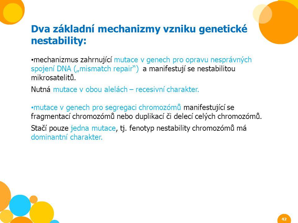 """Dva základní mechanizmy vzniku genetické nestability: mechanizmus zahrnující mutace v genech pro opravu nesprávných spojení DNA (""""mismatch repair"""") a"""