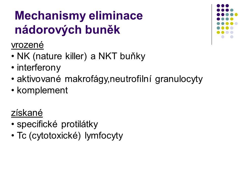 vrozené NK (nature killer) a NKT buňky interferony aktivované makrofágy,neutrofilní granulocyty komplement získané specifické protilátky Tc (cytotoxické) lymfocyty Mechanismy eliminace nádorových buněk