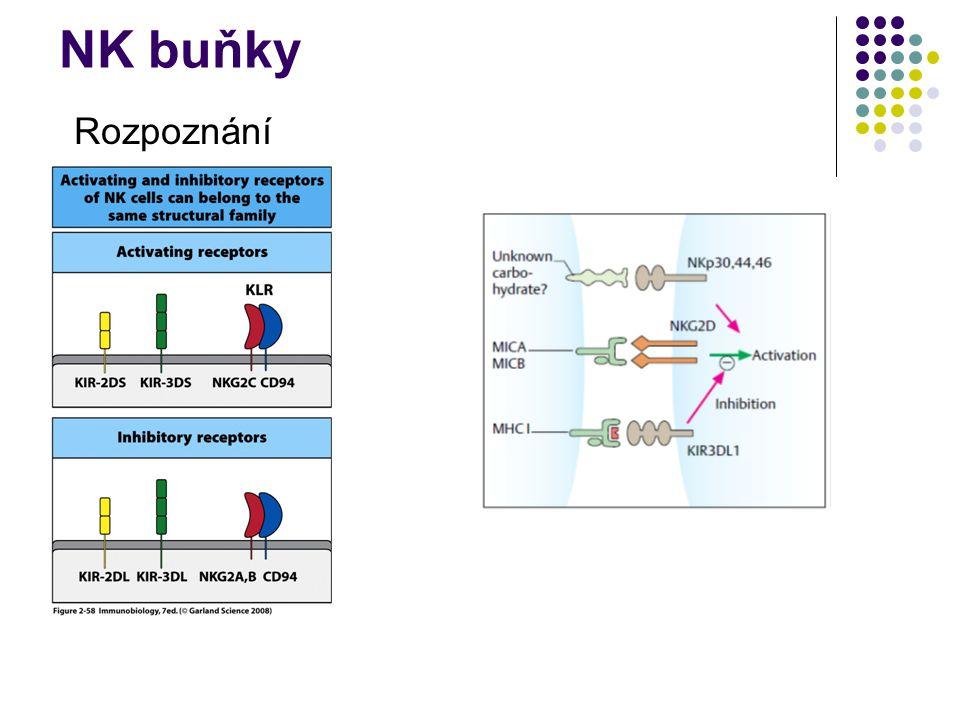 NK buňky Rozpoznání