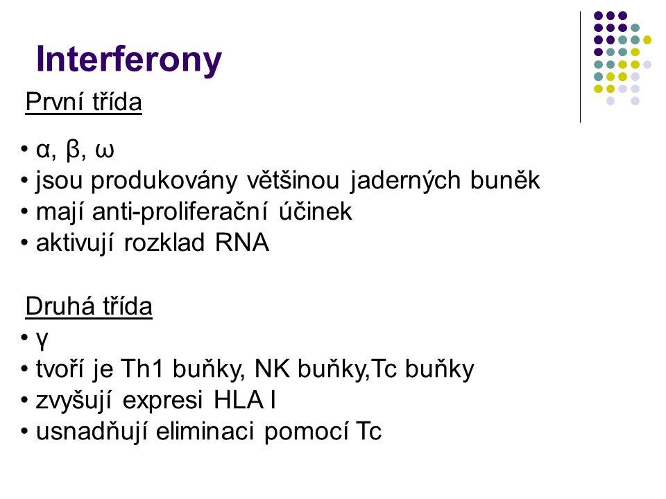 Interferony První třída Druhá třída α, β, ω jsou produkovány většinou jaderných buněk mají anti-proliferační účinek aktivují rozklad RNA γ tvoří je Th1 buňky, NK buňky,Tc buňky zvyšují expresi HLA I usnadňují eliminaci pomocí Tc