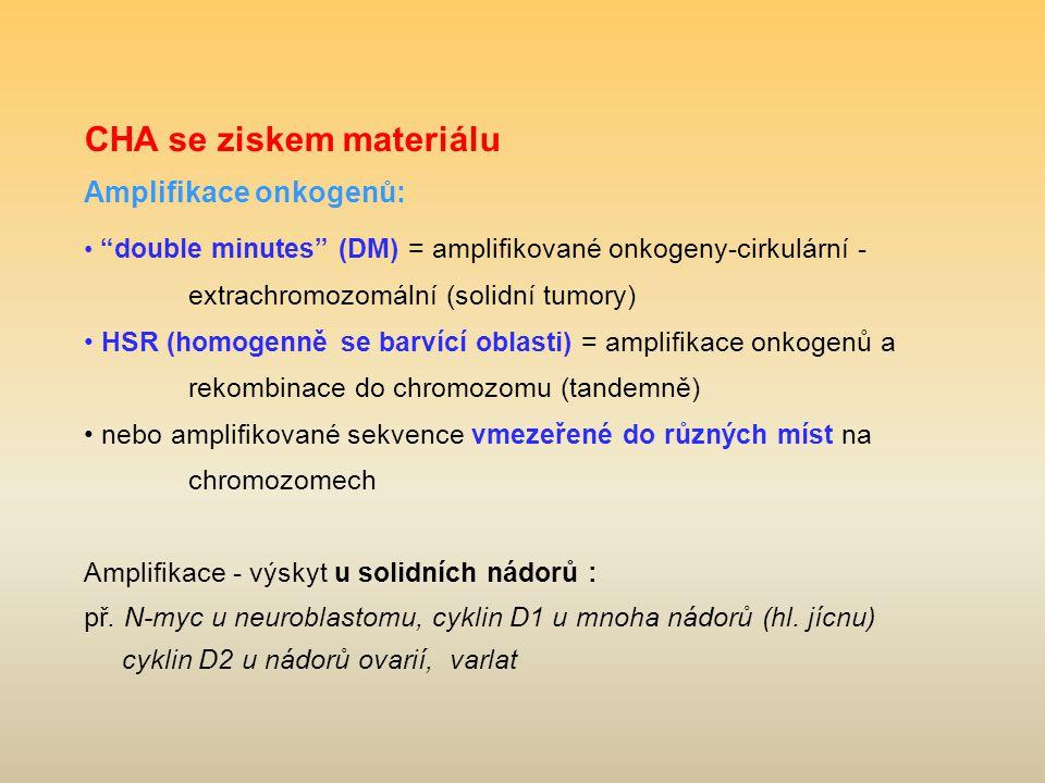 CHA se ziskem materiálu Amplifikace onkogenů: double minutes (DM) = amplifikované onkogeny-cirkulární - extrachromozomální (solidní tumory) HSR (homogenně se barvící oblasti) = amplifikace onkogenů a rekombinace do chromozomu (tandemně) nebo amplifikované sekvence vmezeřené do různých míst na chromozomech Amplifikace - výskyt u solidních nádorů : př.