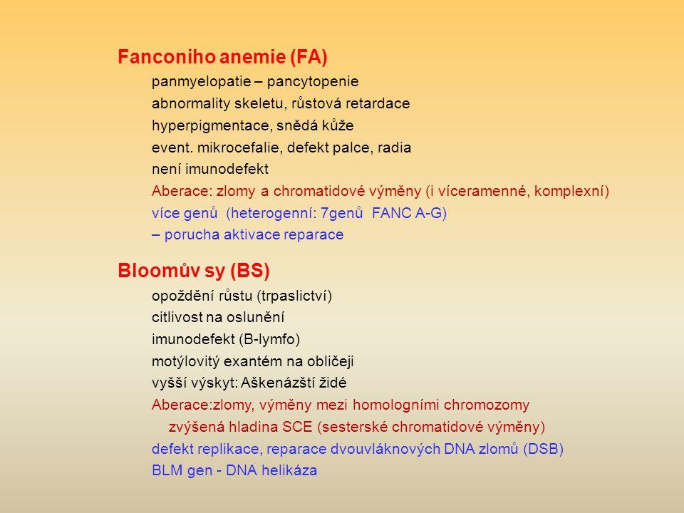 Fanconiho anemie (FA) panmyelopatie – pancytopenie abnormality skeletu, růstová retardace hyperpigmentace, snědá kůže event.