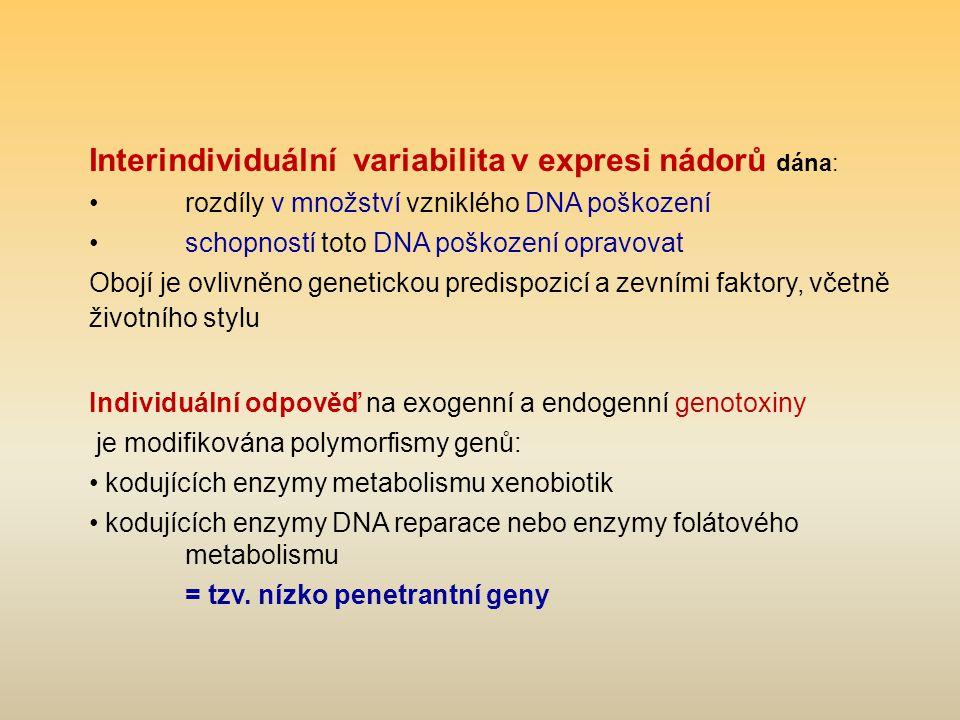 Interindividuální variabilita v expresi nádorů dána: rozdíly v množství vzniklého DNA poškození schopností toto DNA poškození opravovat Obojí je ovlivněno genetickou predispozicí a zevními faktory, včetně životního stylu Individuální odpověď na exogenní a endogenní genotoxiny je modifikována polymorfismy genů: kodujících enzymy metabolismu xenobiotik kodujících enzymy DNA reparace nebo enzymy folátového metabolismu = tzv.