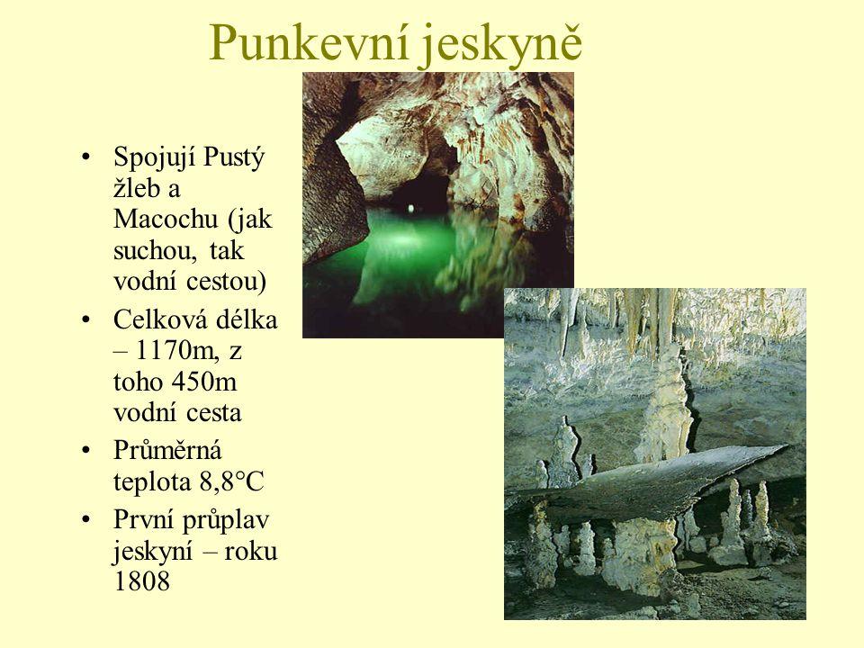 Punkevní jeskyně Spojují Pustý žleb a Macochu (jak suchou, tak vodní cestou) Celková délka – 1170m, z toho 450m vodní cesta Průměrná teplota 8,8°C Prv