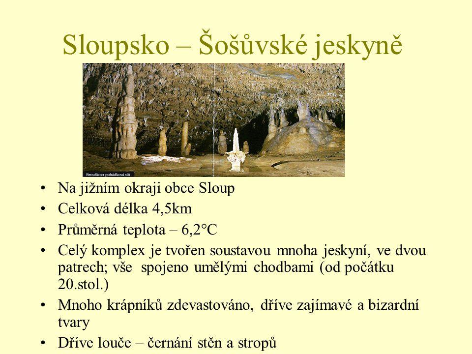 Sloupsko – Šošůvské jeskyně Na jižním okraji obce Sloup Celková délka 4,5km Průměrná teplota – 6,2°C Celý komplex je tvořen soustavou mnoha jeskyní, v