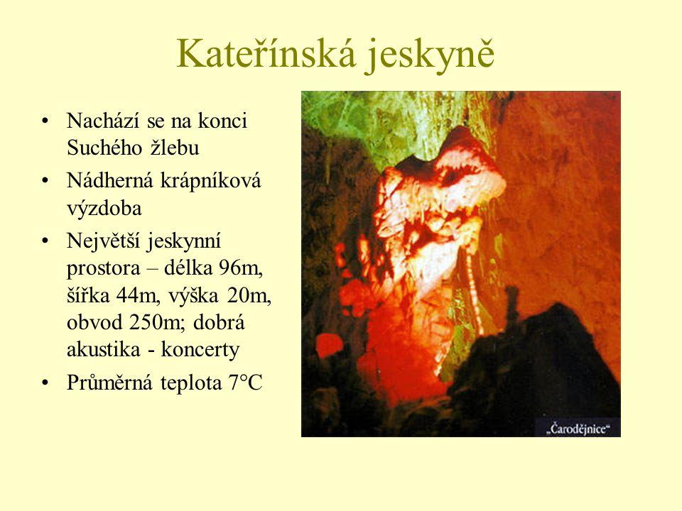 Kateřínská jeskyně Nachází se na konci Suchého žlebu Nádherná krápníková výzdoba Největší jeskynní prostora – délka 96m, šířka 44m, výška 20m, obvod 2