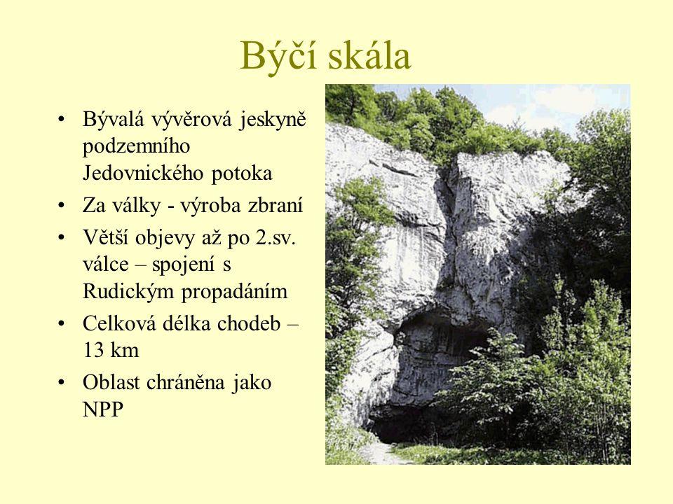 Býčí skála Bývalá vývěrová jeskyně podzemního Jedovnického potoka Za války - výroba zbraní Větší objevy až po 2.sv. válce – spojení s Rudickým propadá