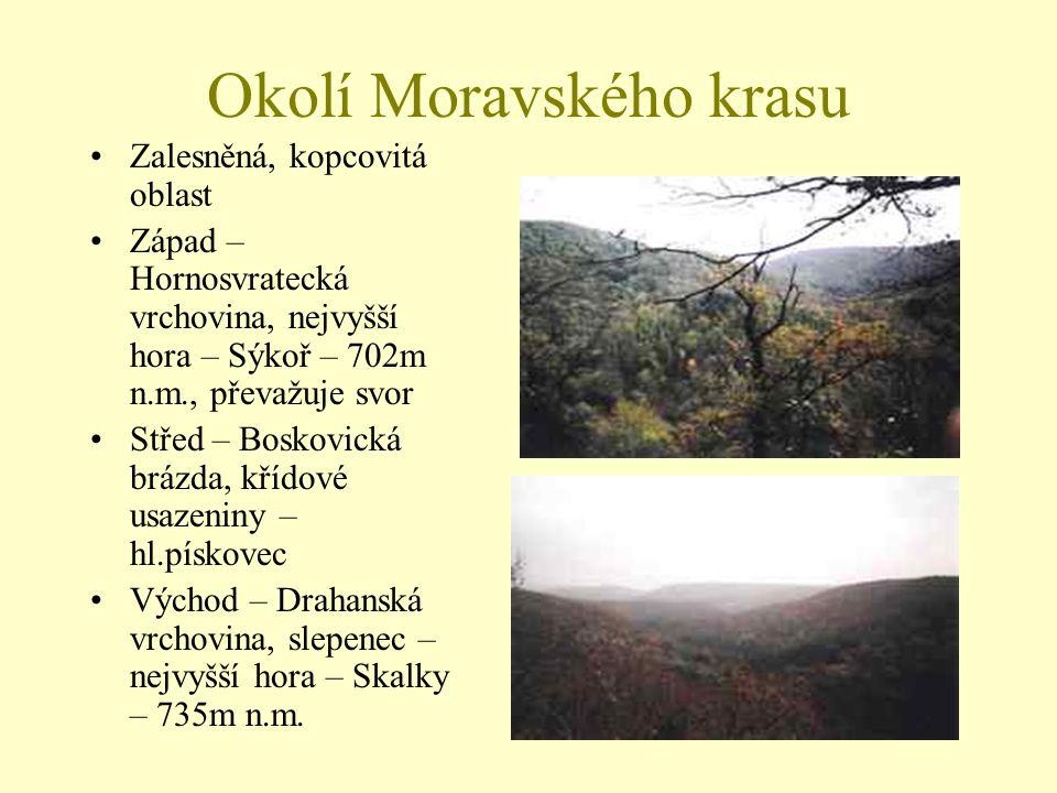 Okolí Moravského krasu Zalesněná, kopcovitá oblast Západ – Hornosvratecká vrchovina, nejvyšší hora – Sýkoř – 702m n.m., převažuje svor Střed – Boskovi