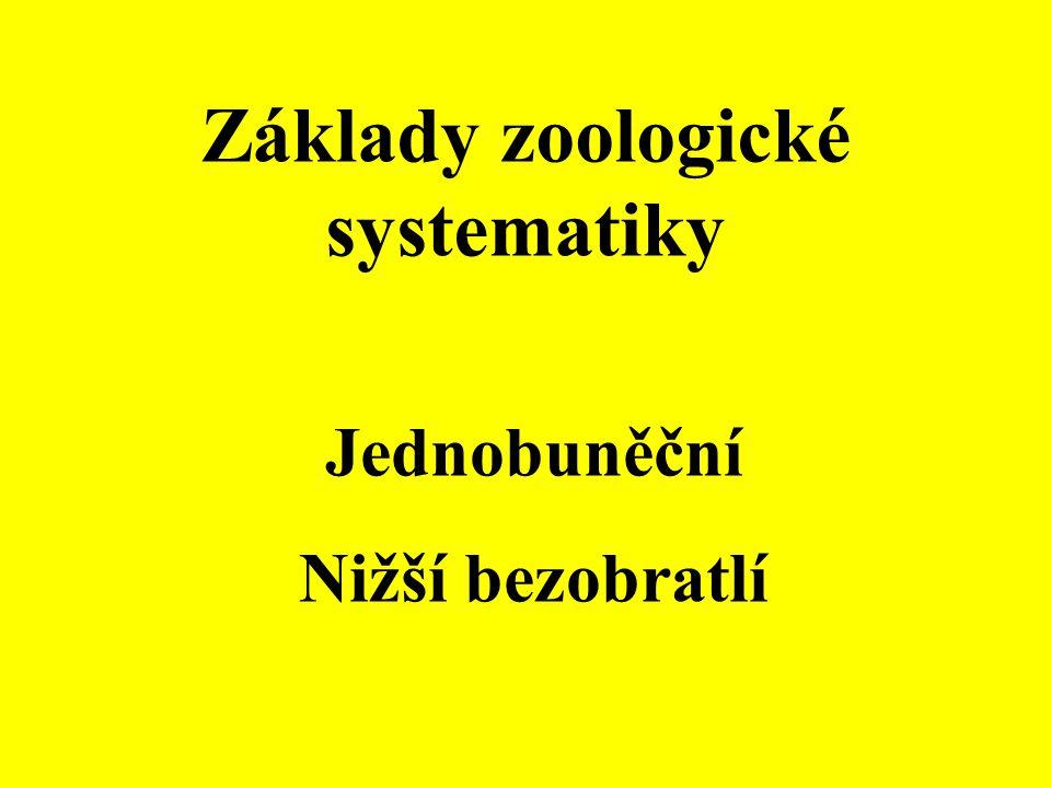 Základy zoologické systematiky Jednobuněční Nižší bezobratlí