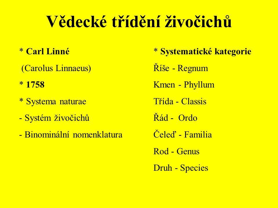 Vývoj názorů na klasifikaci živočichů * Podobnost × příbuznost * Evoluce organismů C.