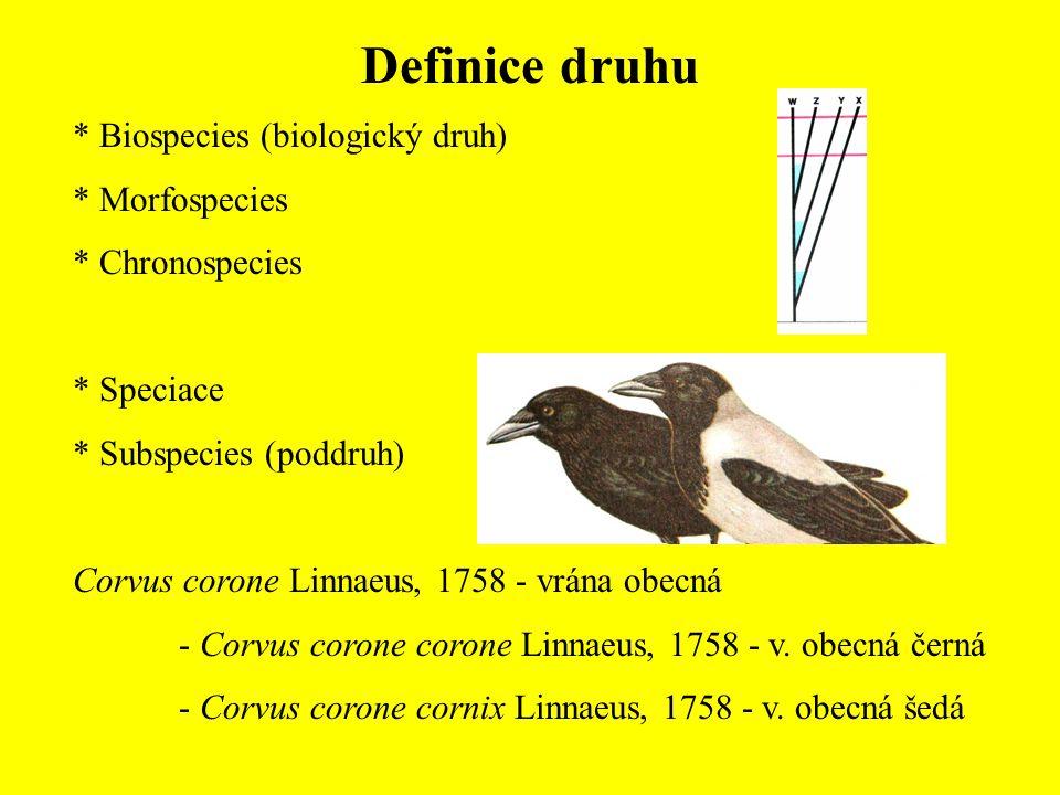 Definice druhu * Biospecies (biologický druh) * Morfospecies * Chronospecies * Speciace * Subspecies (poddruh) Corvus corone Linnaeus, 1758 - vrána ob