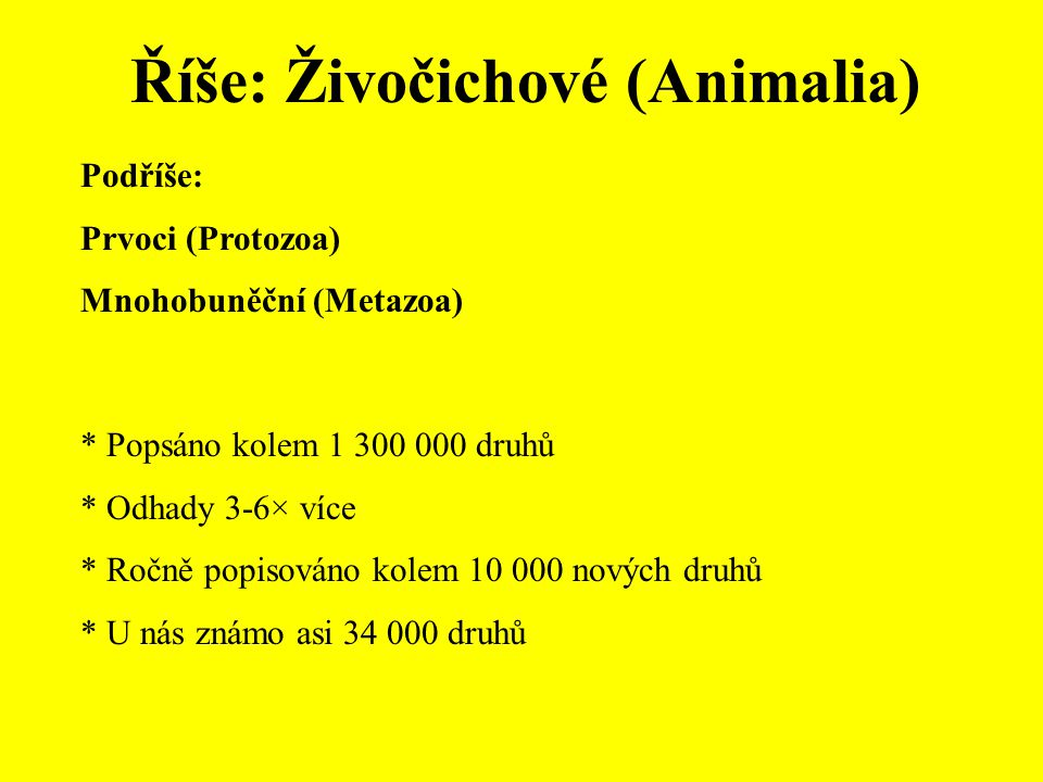 Říše: Živočichové (Animalia) Podříše: Prvoci (Protozoa) Mnohobuněční (Metazoa) * Popsáno kolem 1 300 000 druhů * Odhady 3-6× více * Ročně popisováno kolem 10 000 nových druhů * U nás známo asi 34 000 druhů