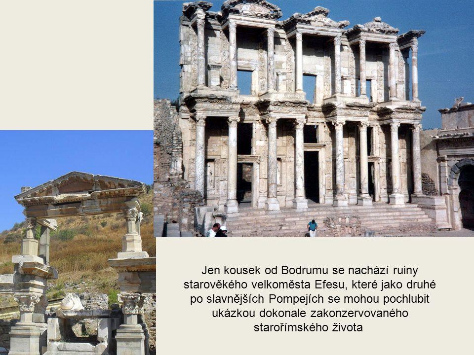 Jak byla stavba vysoká, jak velké měla základy se ví přesně, ale jak Mausoleum vypadalo, to si už nikdo nepamatuje