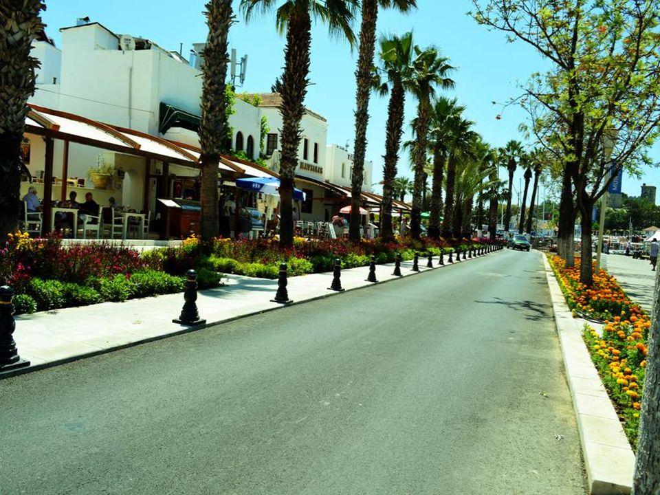 Bodrum je turecké přístavní město v blízkosti řeckého ostrova Kós. Žije zde asi 120 000 obyvatel