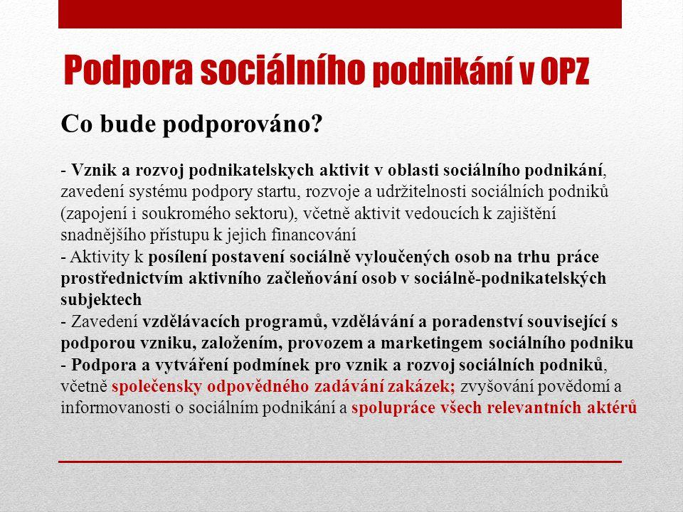 Podpora sociálního podnikání v OPZ Co bude podporováno.