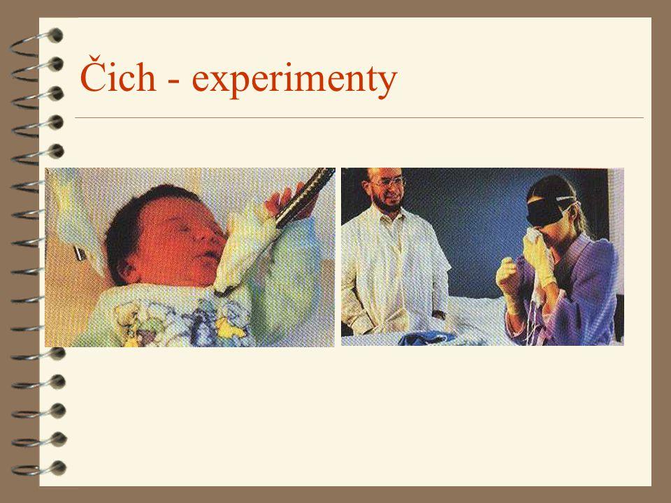 Čich - experimenty
