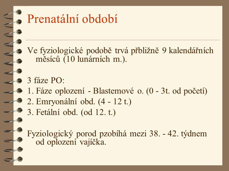 Prenatální období Ve fyziologické podobě trvá přbližně 9 kalendářních měsíců (10 lunárních m.). 3 fáze PO: 1. Fáze oplození - Blastemové o. (0 - 3t. o