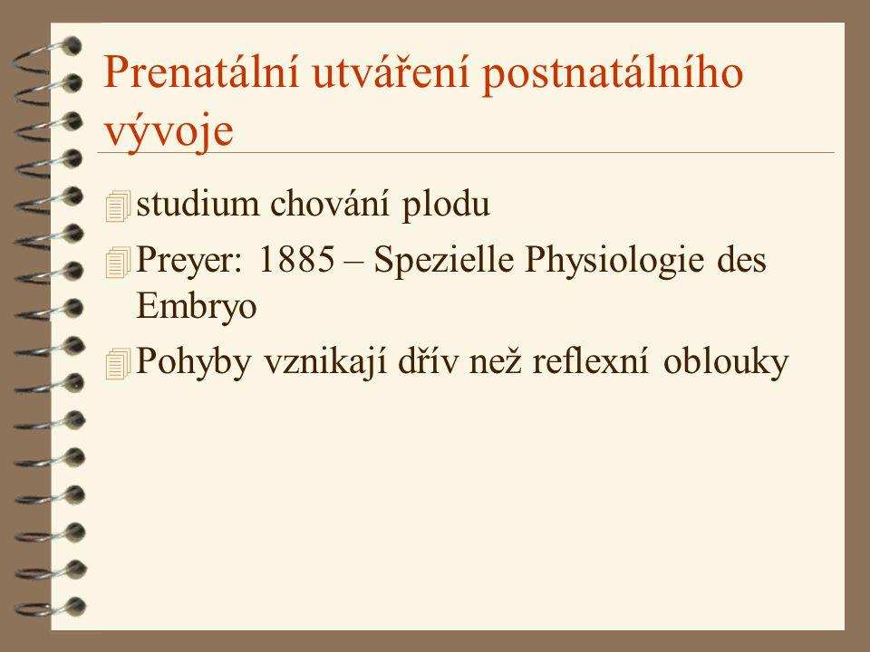 Prenatální utváření postnatálního vývoje 4 studium chování plodu 4 Preyer: 1885 – Spezielle Physiologie des Embryo 4 Pohyby vznikají dřív než reflexní