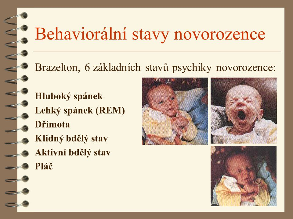 Behaviorální stavy novorozence Brazelton, 6 základních stavů psychiky novorozence: Hluboký spánek Lehký spánek (REM) Dřímota Klidný bdělý stav Aktivní