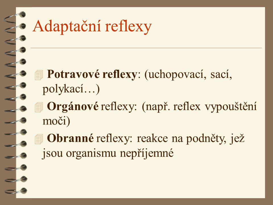 Adaptační reflexy 4 Potravové reflexy: (uchopovací, sací, polykací…) 4 Orgánové reflexy: (např. reflex vypouštění moči) 4 Obranné reflexy: reakce na p
