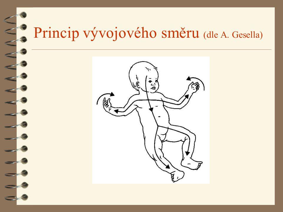 Princip vývojového směru (dle A. Gesella)