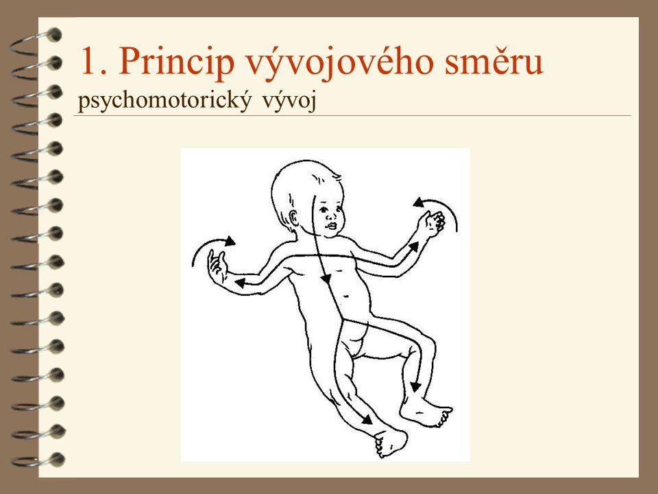 1. Princip vývojového směru psychomotorický vývoj