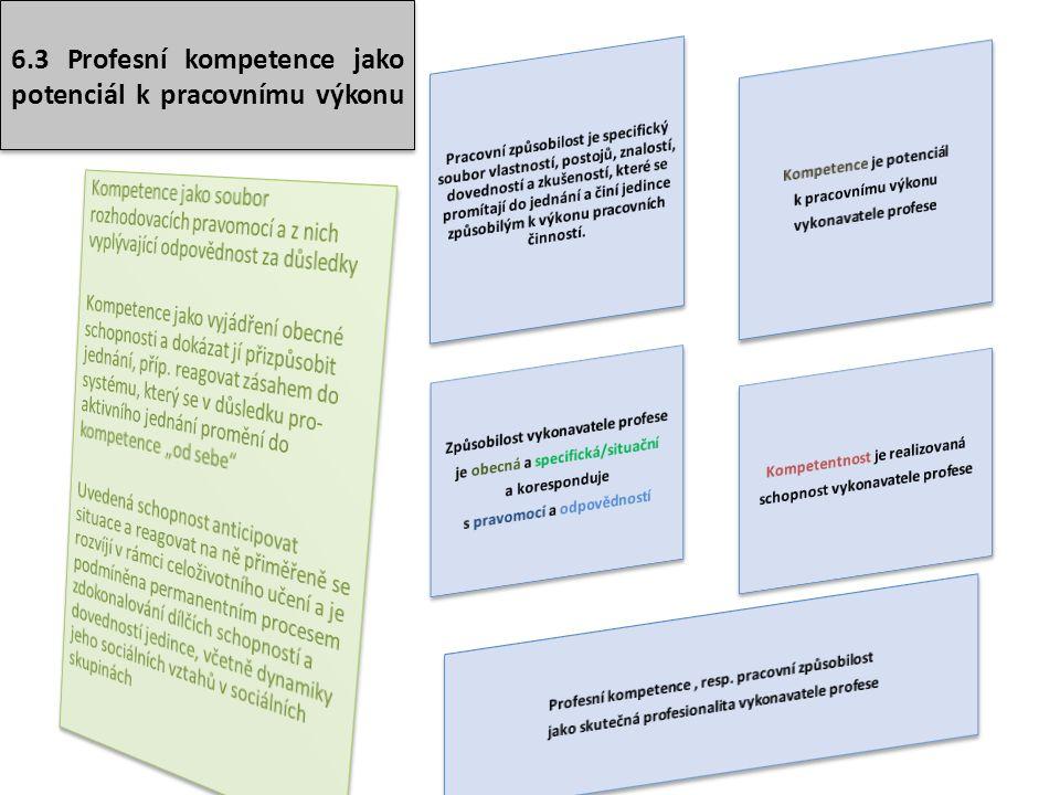 6.3 Profesní kompetence jako potenciál k pracovnímu výkonu