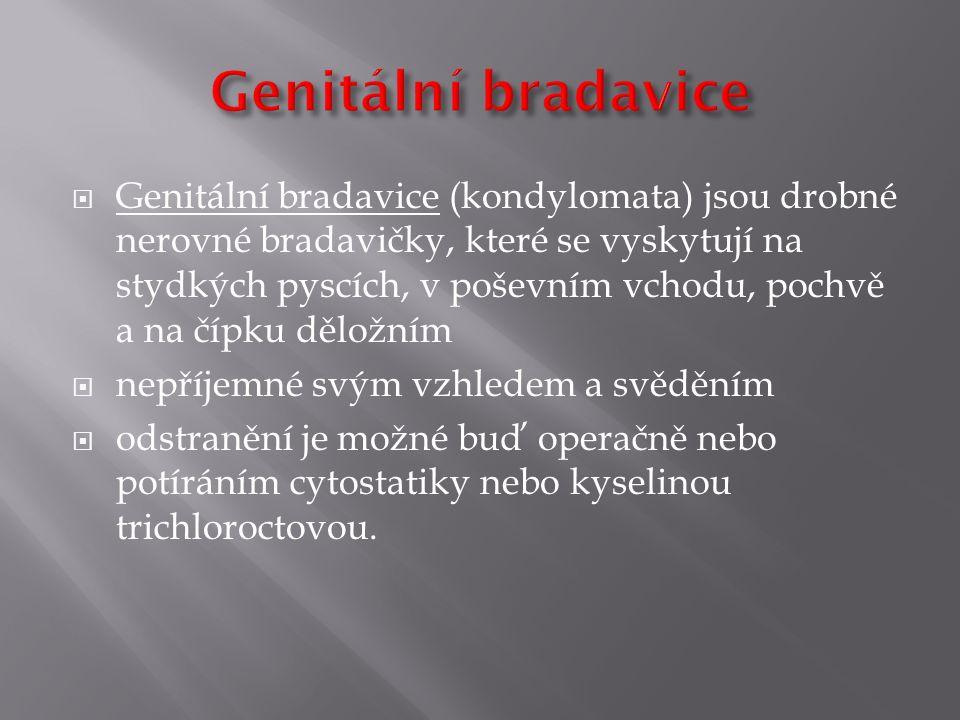  Genitální bradavice (kondylomata) jsou drobné nerovné bradavičky, které se vyskytují na stydkých pyscích, v poševním vchodu, pochvě a na čípku dělož