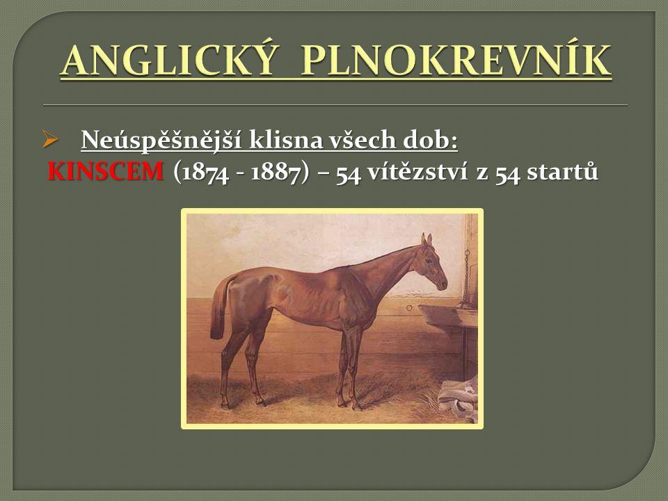  Neúspěšnější klisna všech dob: KINSCEM (1874 - 1887) – 54 vítězství z 54 startů KINSCEM (1874 - 1887) – 54 vítězství z 54 startů