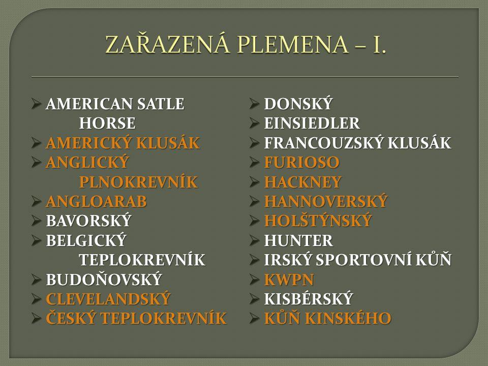  AMERICAN SATLE HORSE  AMERICKÝ KLUSÁK  ANGLICKÝ PLNOKREVNÍK  ANGLOARAB  BAVORSKÝ  BELGICKÝ TEPLOKREVNÍK  BUDOŇOVSKÝ  CLEVELANDSKÝ  ČESKÝ TEP