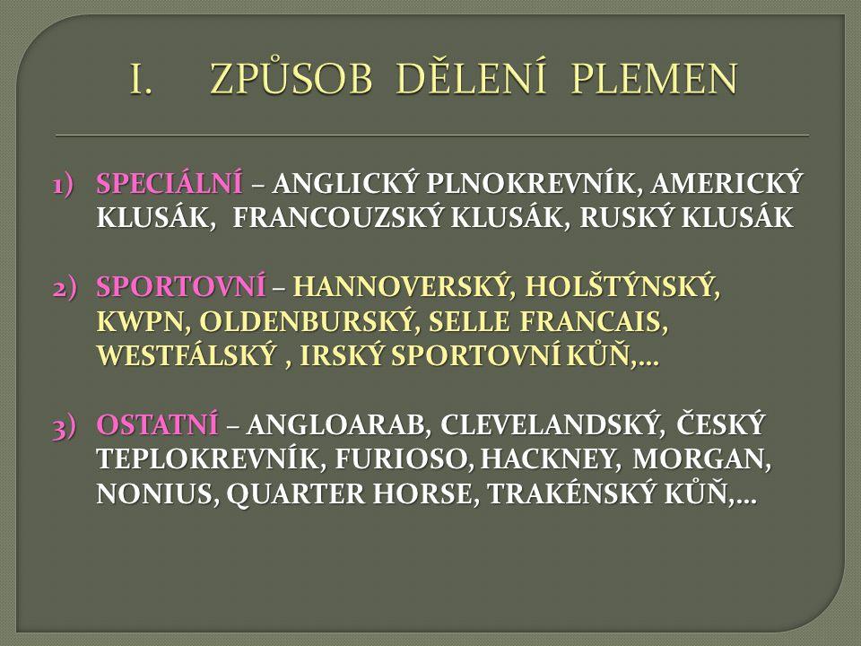 1)WESTERNOVÁ PLEMENA – QUARTER HORSE, PAINT HORSE 2)NĚMECKÁ TEPLOKREVNÁ PLEMENA – HANNOVERSKÝ, HOLŠTÝNSKÝ, OLDENBURSKÝ, TRAKÉNSKÝ, WESTFÁLSKÝ,… 3)ANGLICKÁ TEPLOKREVNÁ PLEMENA – HACKNEY, CLEVELANDSKÝ, HUNTER, MORGAN, NONIUS, NORFOLSKÝ,…