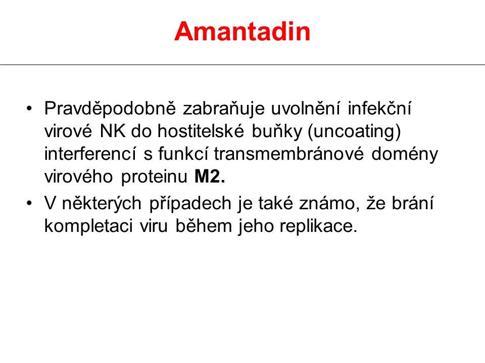 Amantadin Pravděpodobně zabraňuje uvolnění infekční virové NK do hostitelské buňky (uncoating) interferencí s funkcí transmembránové domény virového p