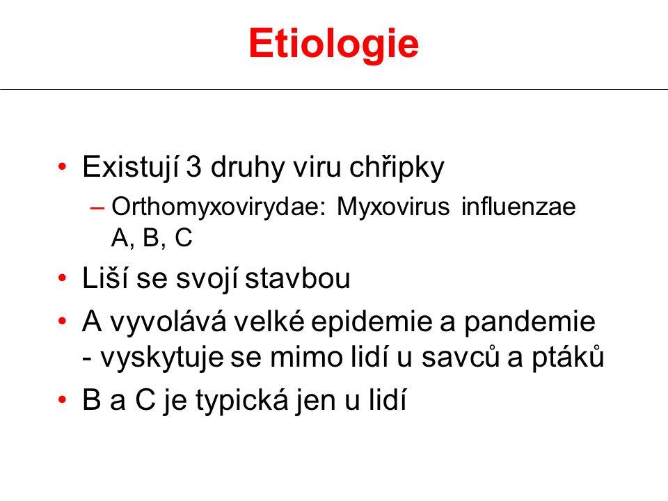Etiologie Existují 3 druhy viru chřipky –Orthomyxovirydae: Myxovirus influenzae A, B, C Liší se svojí stavbou A vyvolává velké epidemie a pandemie - v