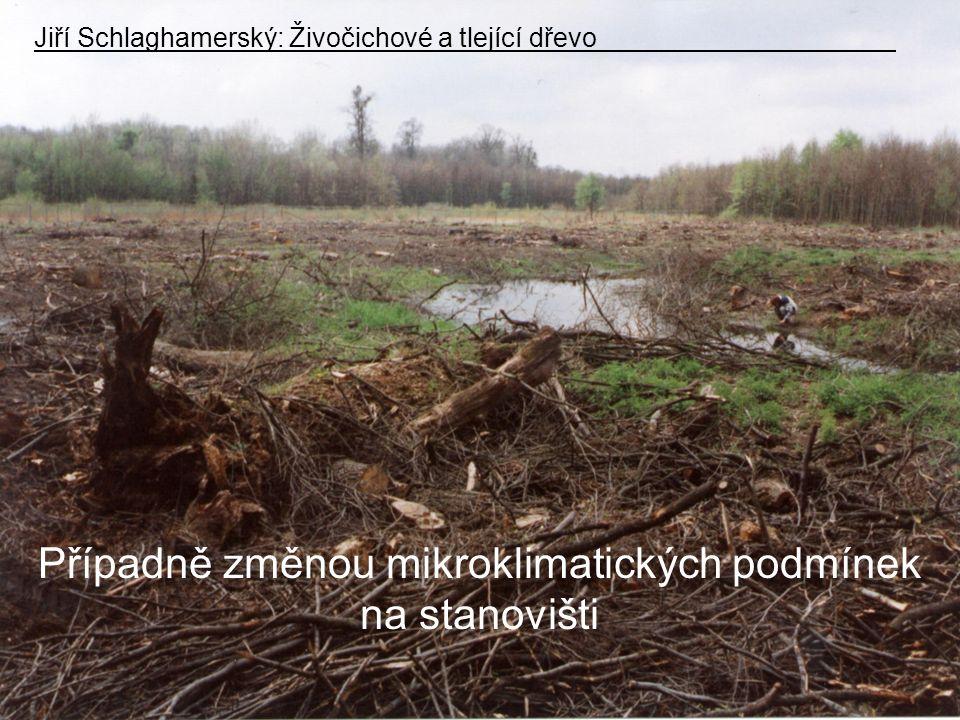 Případně změnou mikroklimatických podmínek na stanovišti Jiří Schlaghamerský: Živočichové a tlející dřevo