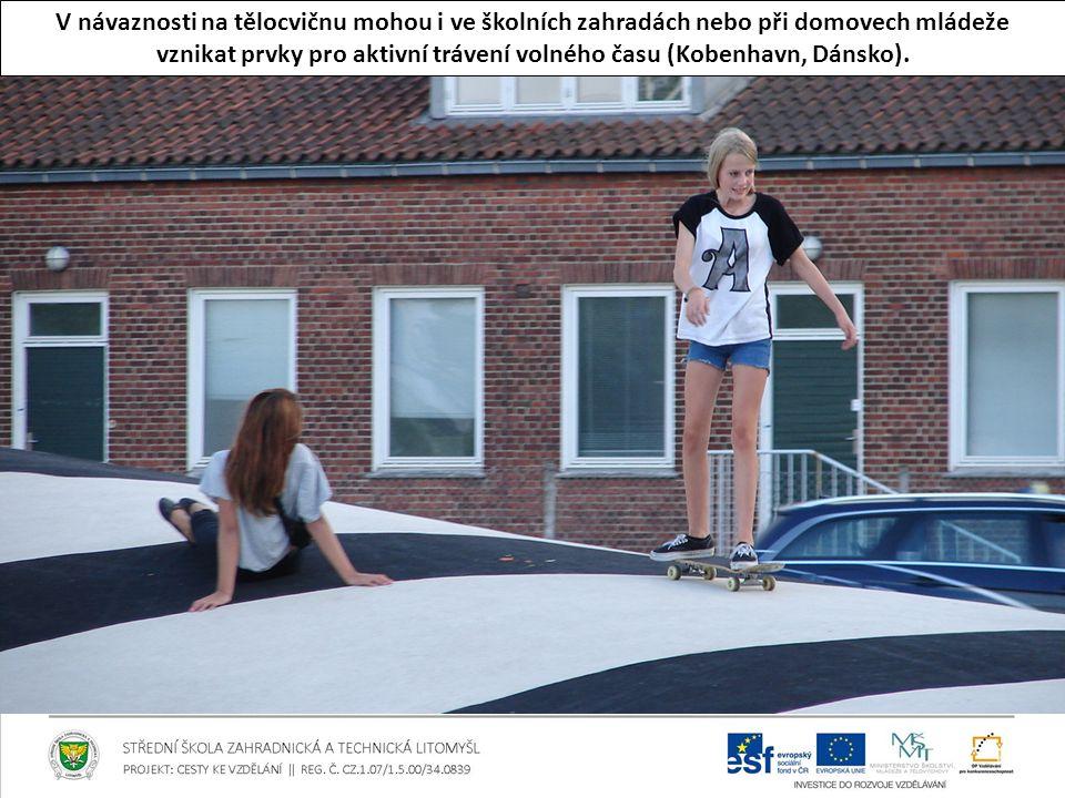 V návaznosti na tělocvičnu mohou i ve školních zahradách nebo při domovech mládeže vznikat prvky pro aktivní trávení volného času (Kobenhavn, Dánsko).