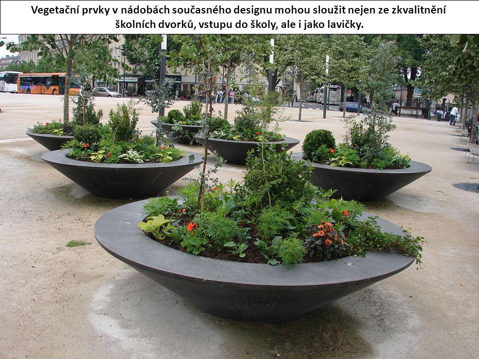 Vegetační prvky v nádobách současného designu mohou sloužit nejen ze zkvalitnění školních dvorků, vstupu do školy, ale i jako lavičky.