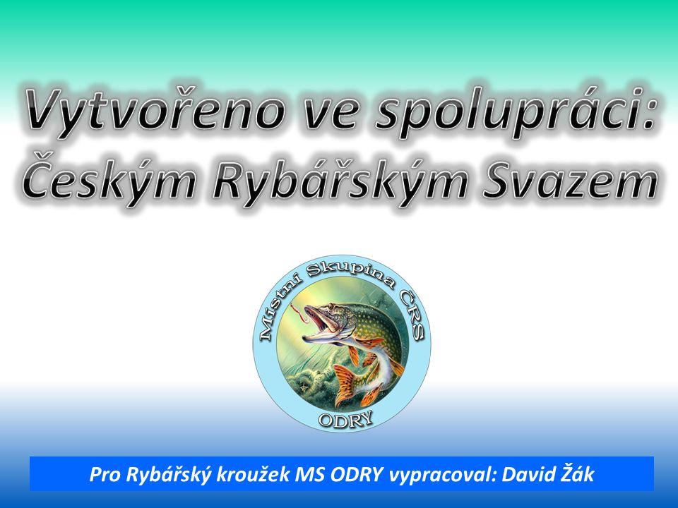 Pro Rybářský kroužek MS ODRY vypracoval: David Žák