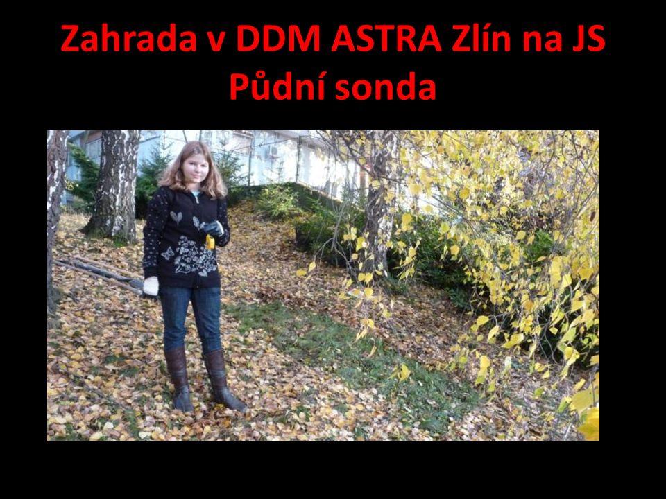 Zahrada v DDM ASTRA Zlín na JS Půdní sonda
