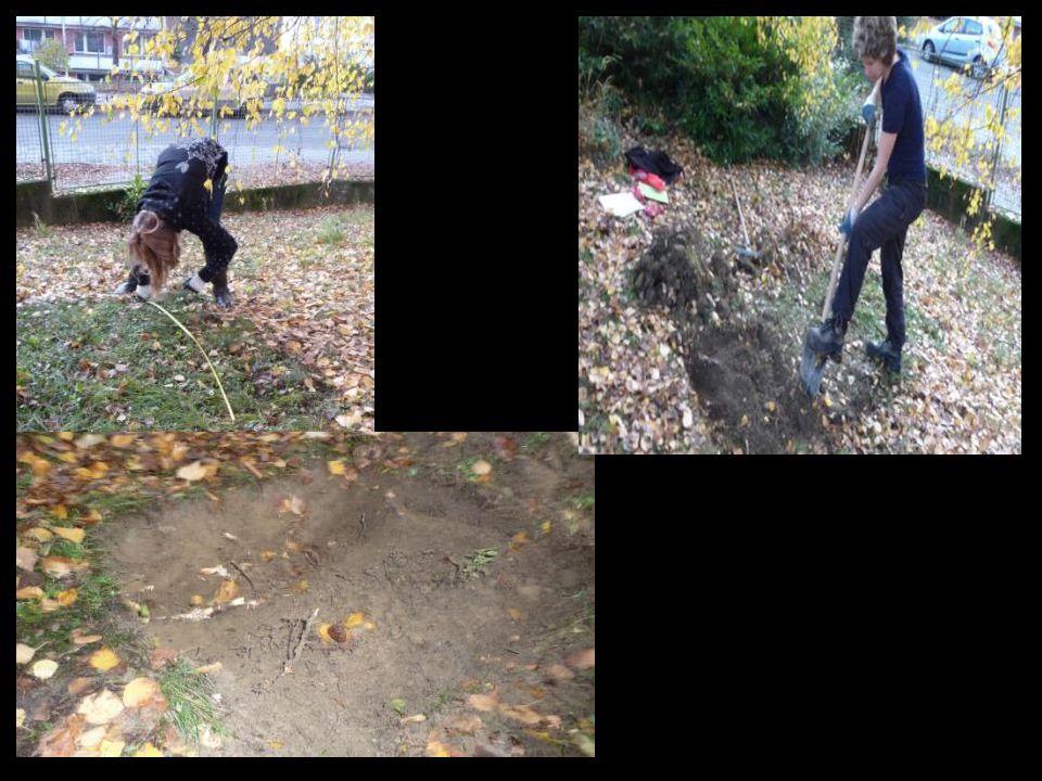 Prvních 30 cm byla pouze navážka – písek, štěrk, kamení. Hlouběji jsme našli kousky jílu.