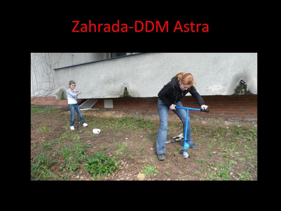 Zahrada-DDM Astra