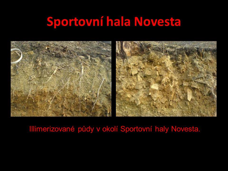 Sportovní hala Novesta Illimerizované půdy v okolí Sportovní haly Novesta.