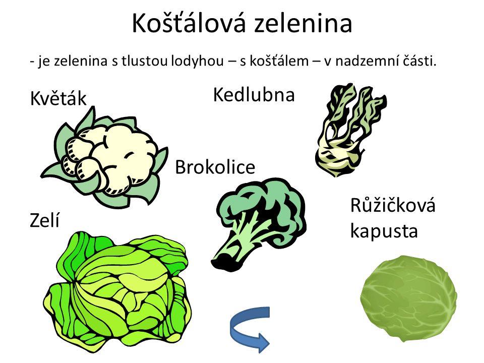 Košťálová zelenina - je zelenina s tlustou lodyhou – s košťálem – v nadzemní části. Květák Kedlubna Brokolice Zelí Růžičková kapusta