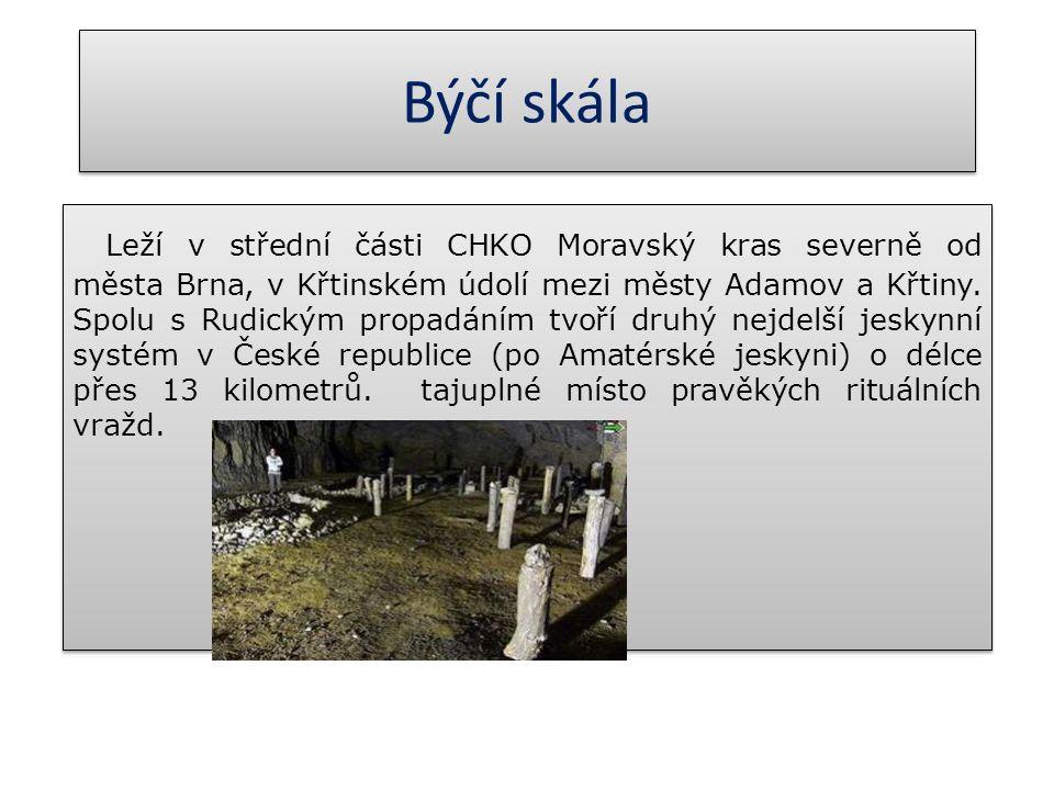 Býčí skála Leží v střední části CHKO Moravský kras severně od města Brna, v Křtinském údolí mezi městy Adamov a Křtiny. Spolu s Rudickým propadáním tv